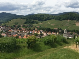 Alsace Wine Country