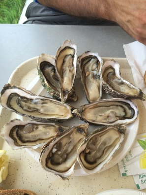 Oysters on the roadside