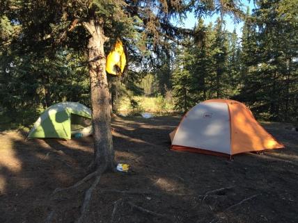 Moose River Camp