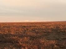 Brooks Range, far away