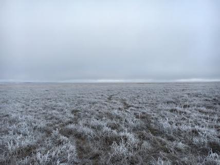 Daybreak in the Arctic